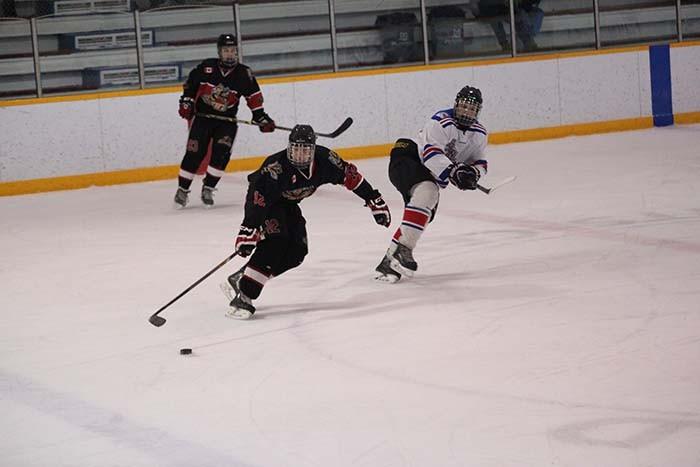 web-hockey